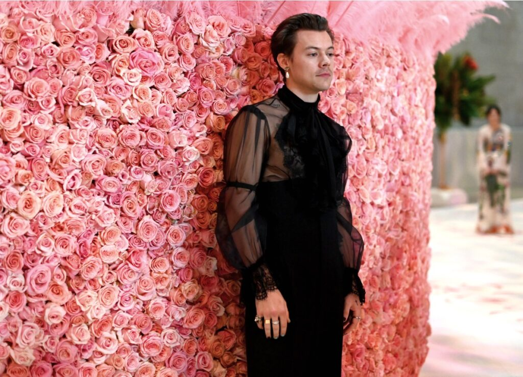Harry Styles Genderless