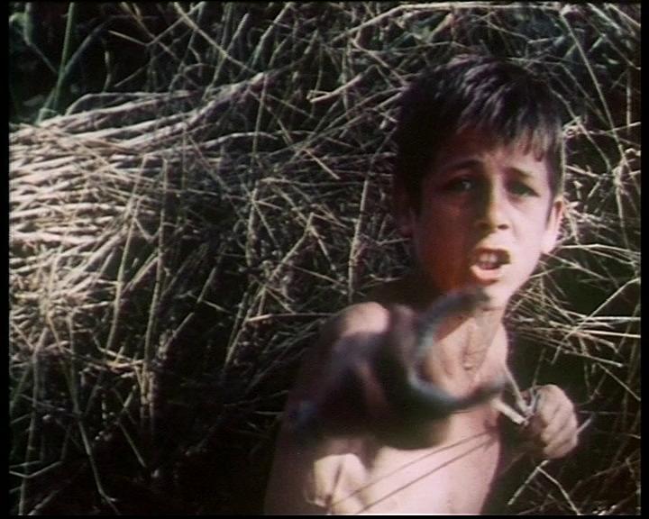 Una scena de La canta delle marane (Cecilia Mangini, 1961). Credits: Archivio Cinema del Reale.