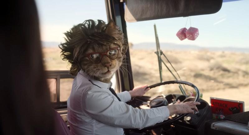 Cat Lady (Beth Grant) in Dollface 1x01